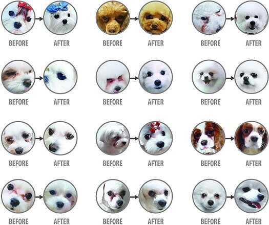 Сухой корм Natures Protection для белых собак