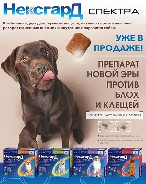 НексГардСпектра Таблетки от блох и клещей для собак купить