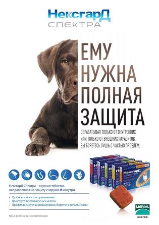 NexGard Spectra от блох и клещей для собак
