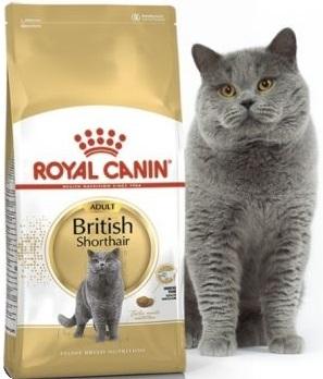 Корм Роял Канин для британских кошек